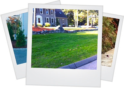 Professional Landscape Maintenance for the greater Walpole MA area - polaroids-maintenance